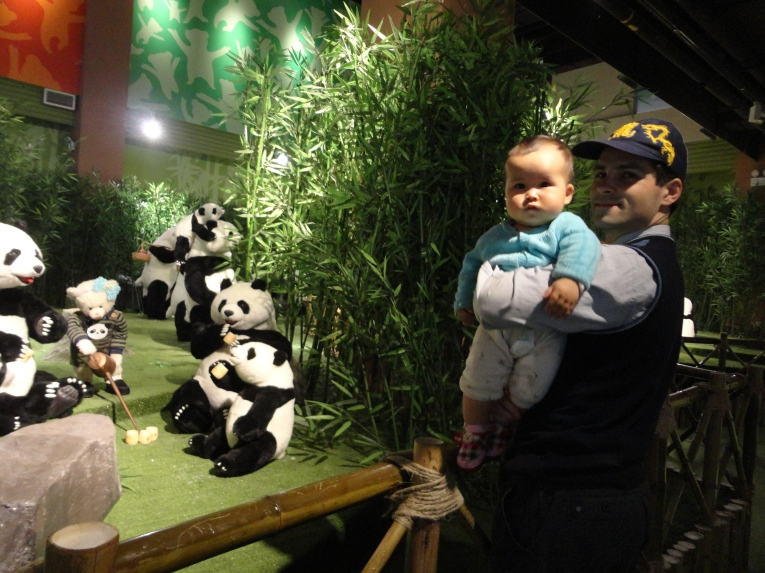 2 - Pandas gently associate creating a thriving community